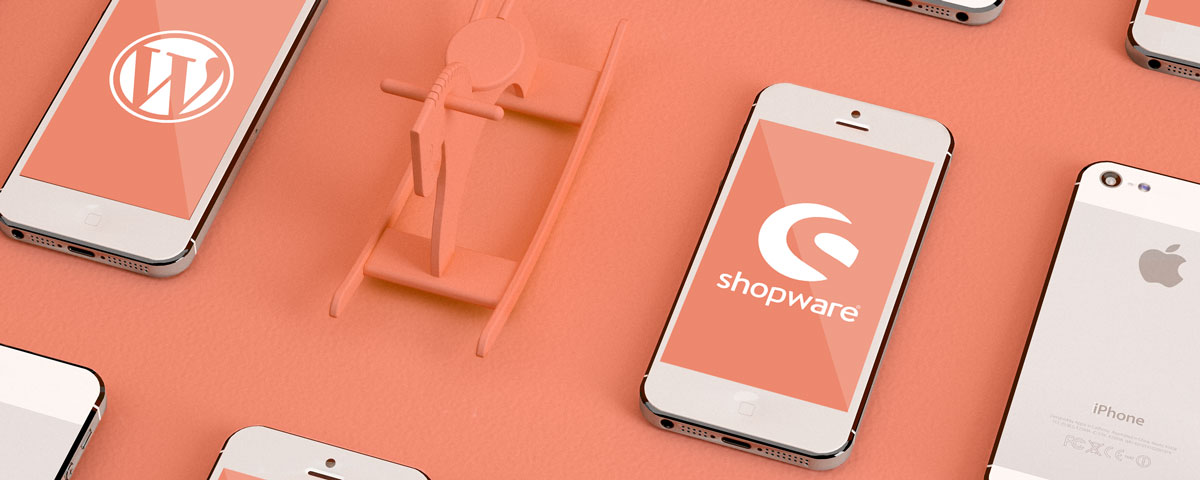 CMS_Wordpress_Shopware_Tools_Ideenbude